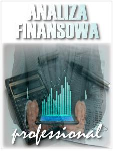 program_analiza_finansowa_professional