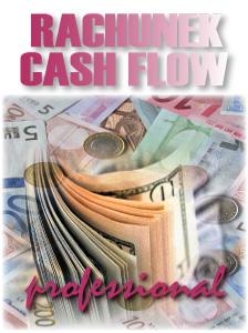 program_rachunek_cash_flow_professional