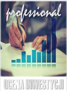 programy-finansowe-program_ocena_inwestycji_professional