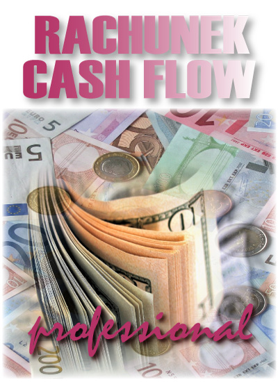 program_rachunek_cash_flow_professional